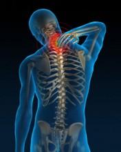 neck pain chiropractors sarasota